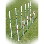 small image of weave poles
