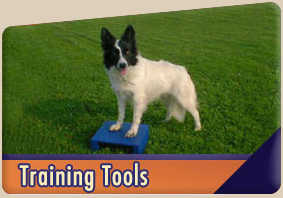 Training tools for dogs